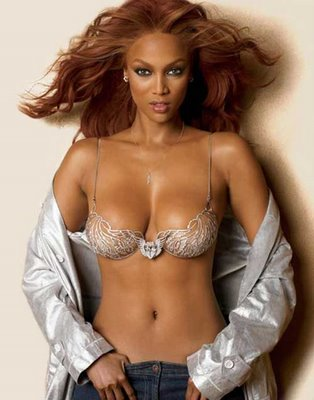 tyra banks 80%nylon 20%spandex swimwear,bikini /underwear fabric with shiny dyed